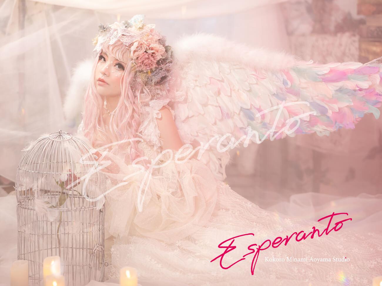 変身写真 天使 ドレス