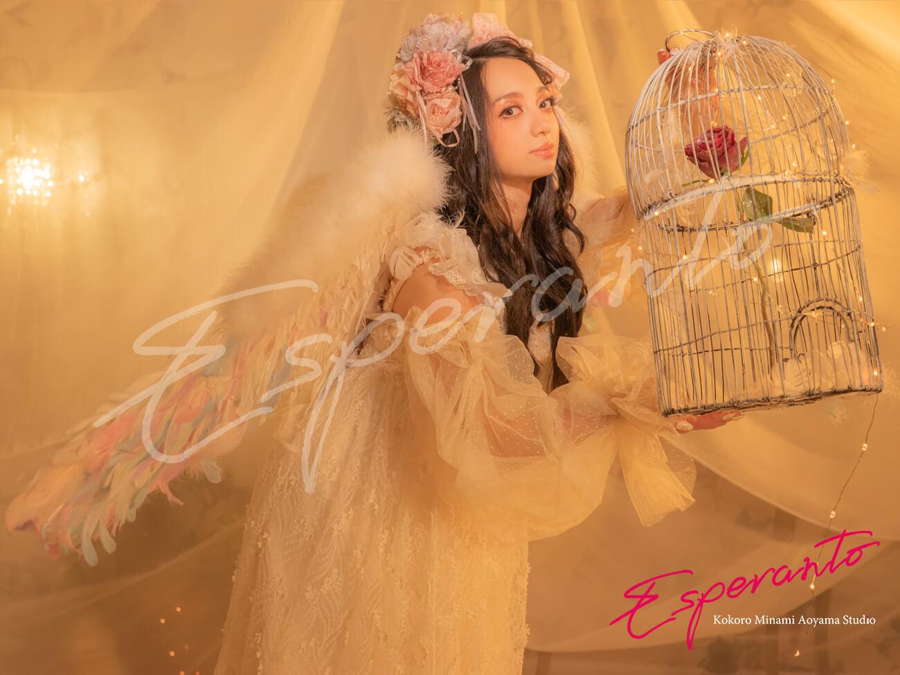 天使 ドレス 撮影