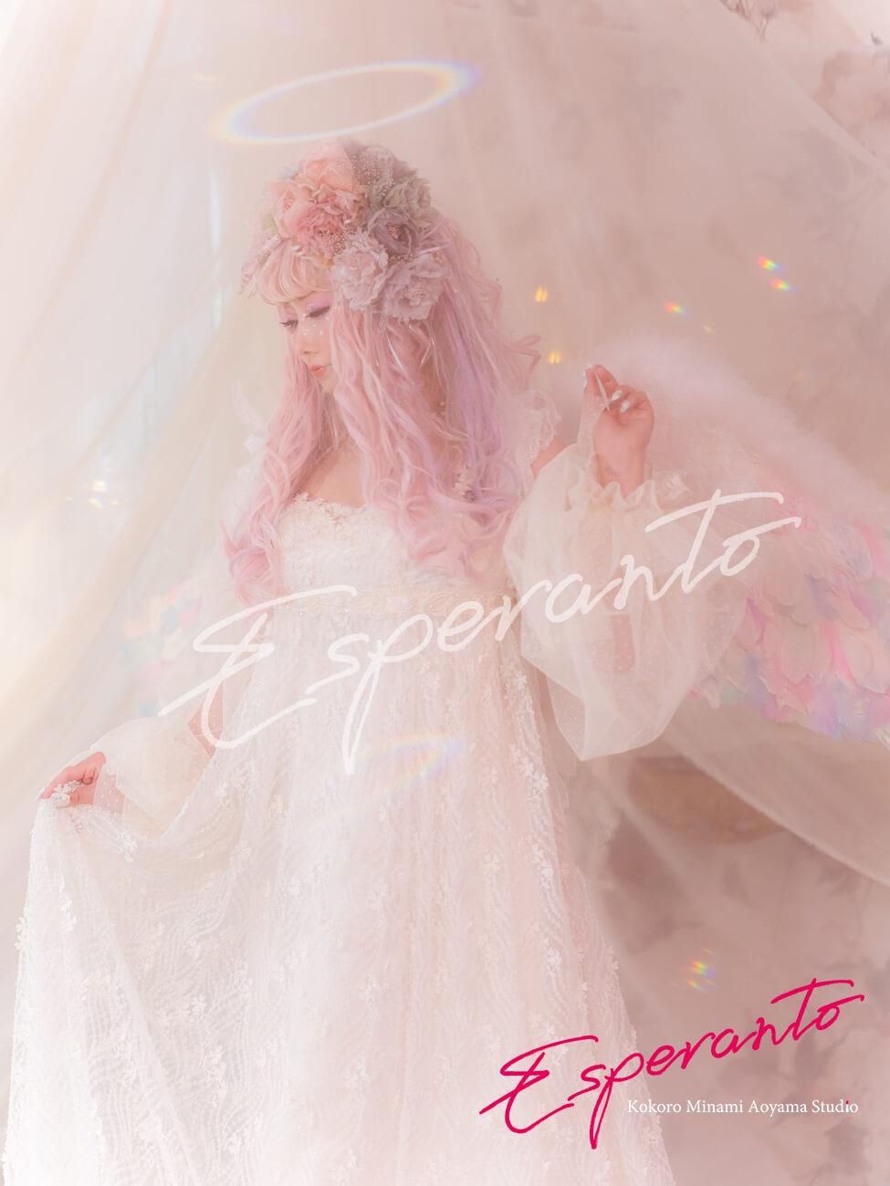 変身写真 ドレス 天使