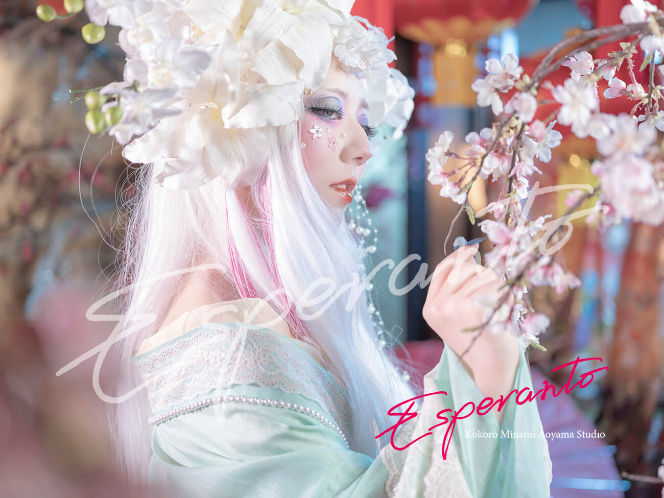 百樂合姫 変身写真